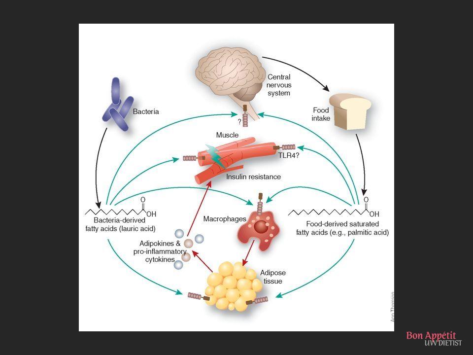 Ook bacteriën en virussen kunnen insulineresistentie veroorzaken
