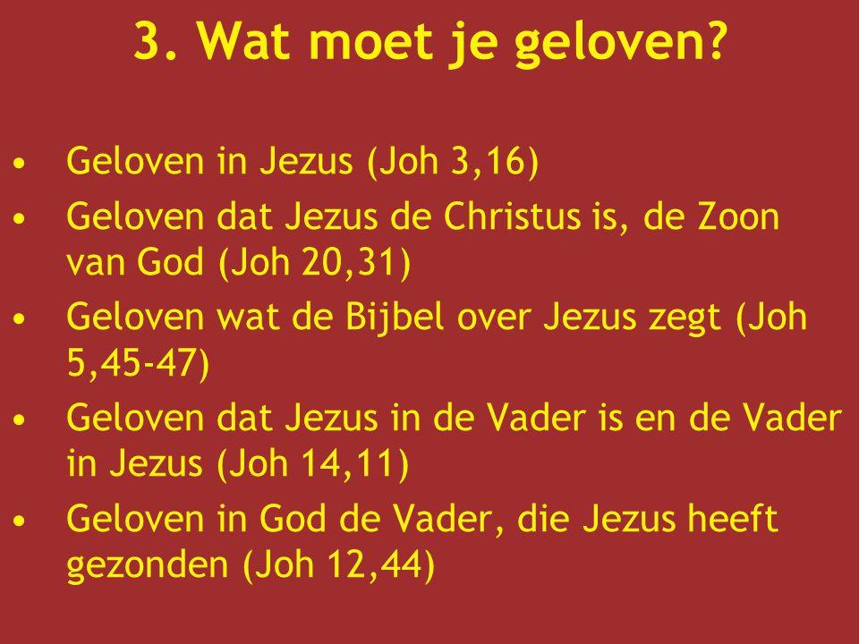 3. Wat moet je geloven Geloven in Jezus (Joh 3,16)