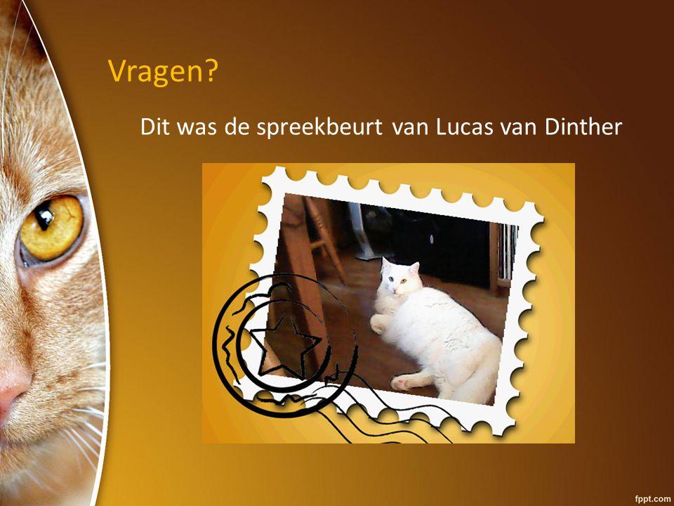 Vragen Dit was de spreekbeurt van Lucas van Dinther