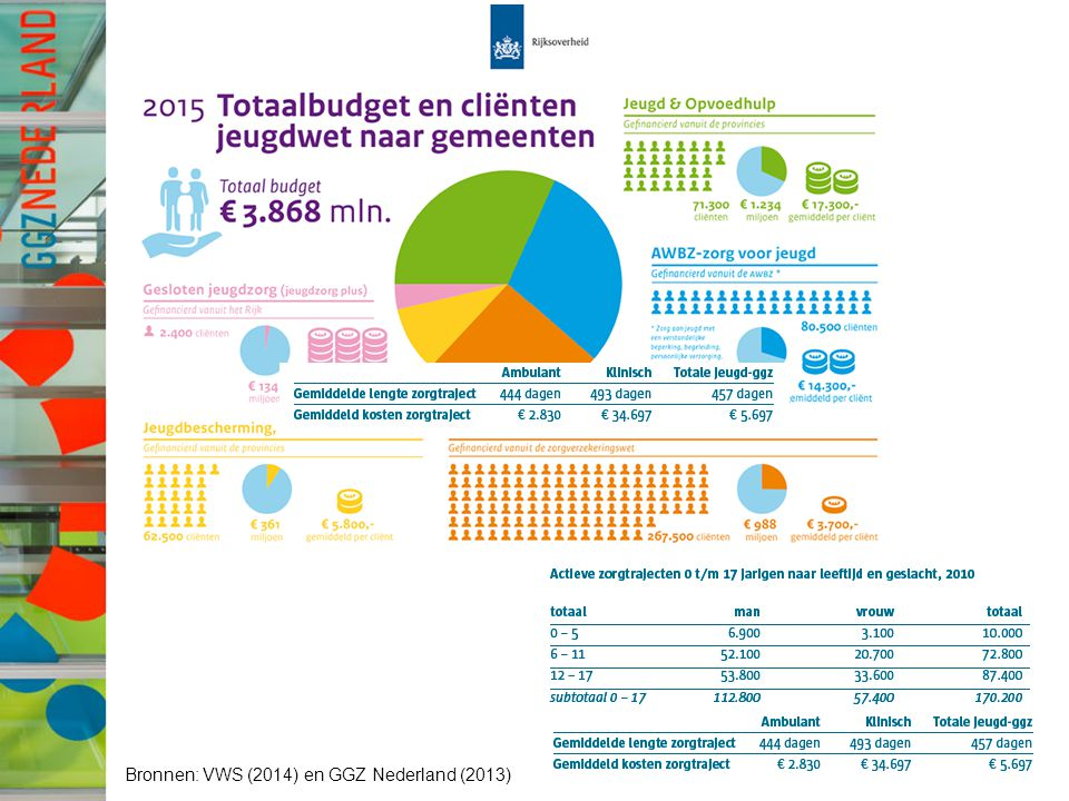 Bronnen: VWS (2014) en GGZ Nederland (2013)