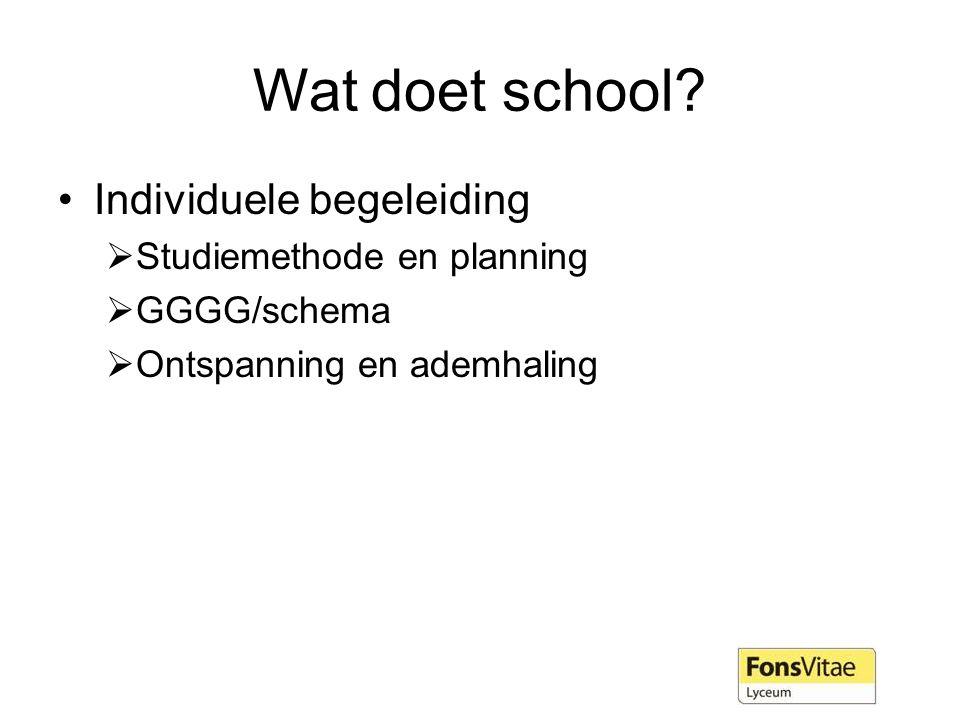 Wat doet school Individuele begeleiding Studiemethode en planning