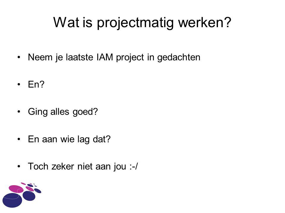 Wat is projectmatig werken