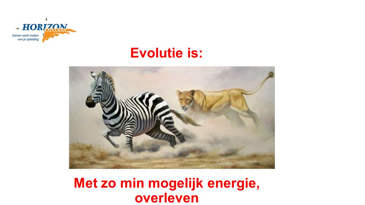 Met zo min mogelijk energie, overleven