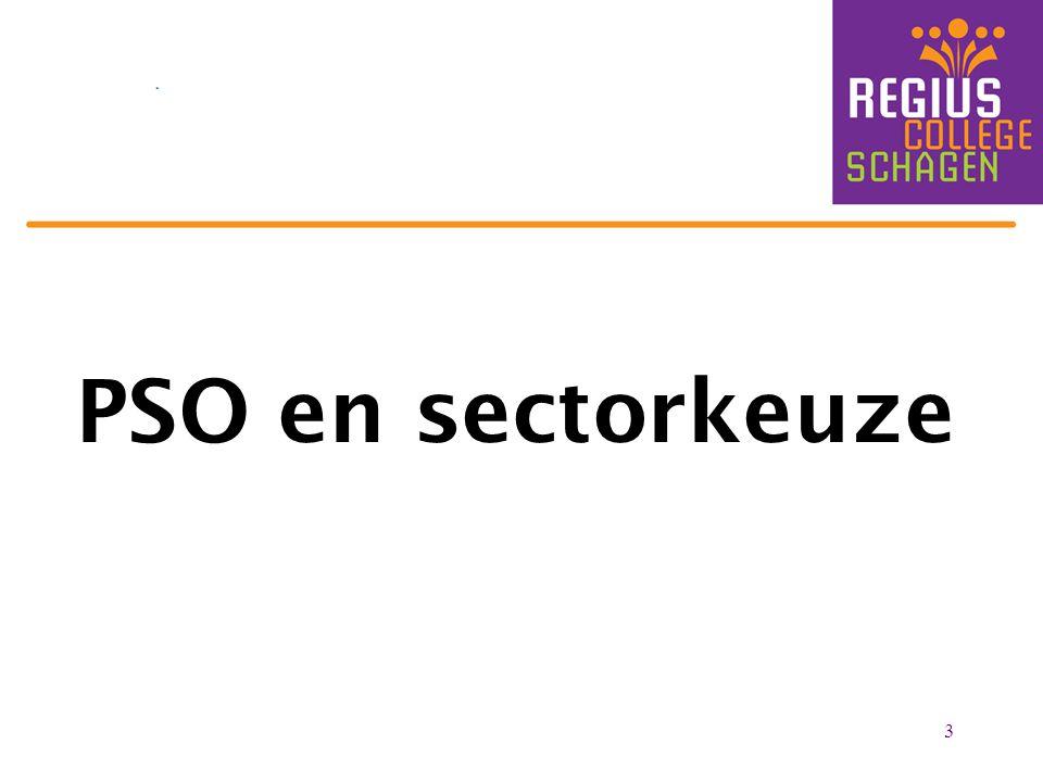 PSO en sectorkeuze