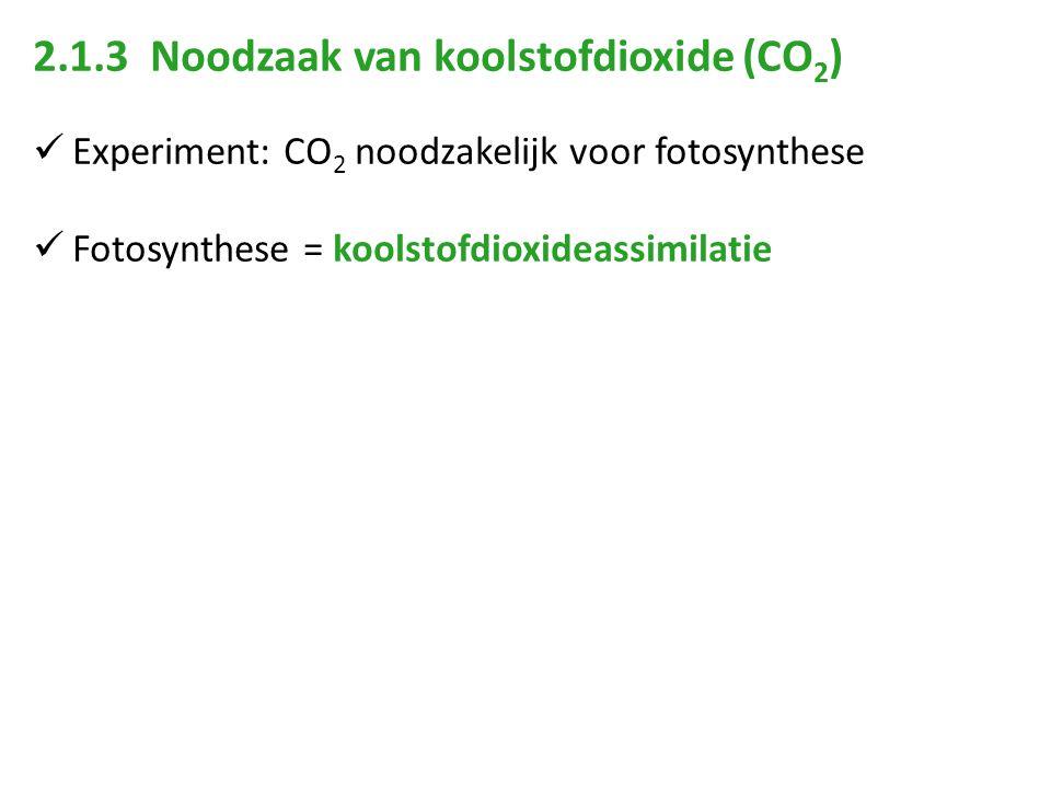 2.1.3 Noodzaak van koolstofdioxide (CO2)