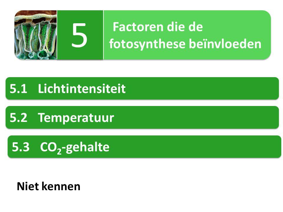 5 fotosynthese beïnvloeden 5.1 Lichtintensiteit 5.2 Temperatuur