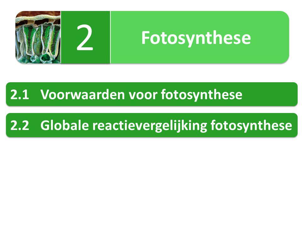 2 2.1 Voorwaarden voor fotosynthese