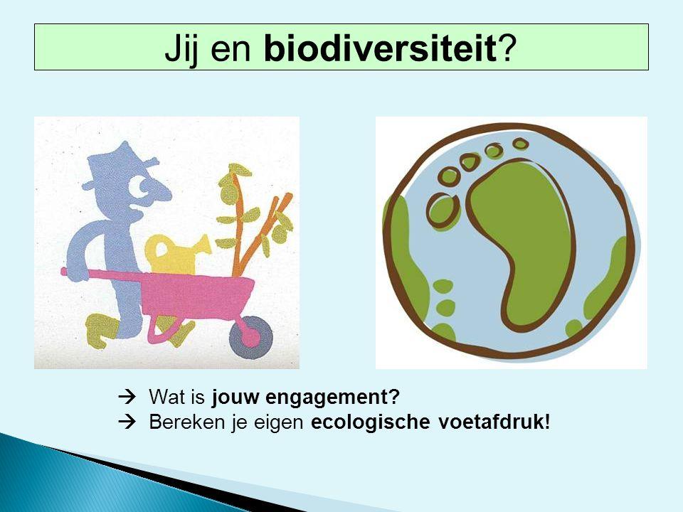Jij en biodiversiteit  Wat is jouw engagement