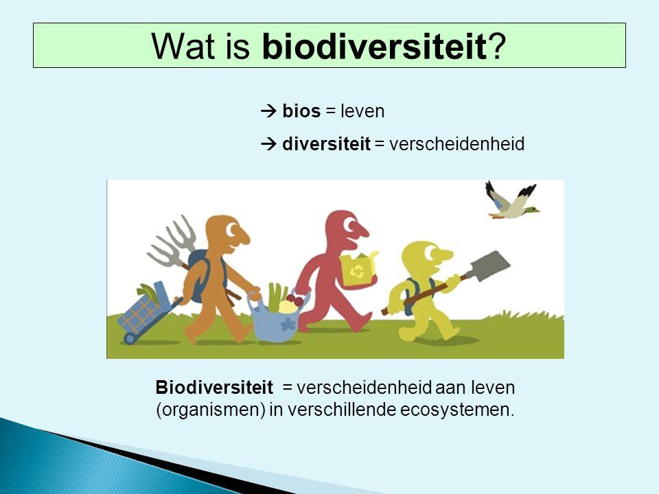 Wat is biodiversiteit  bios = leven  diversiteit = verscheidenheid