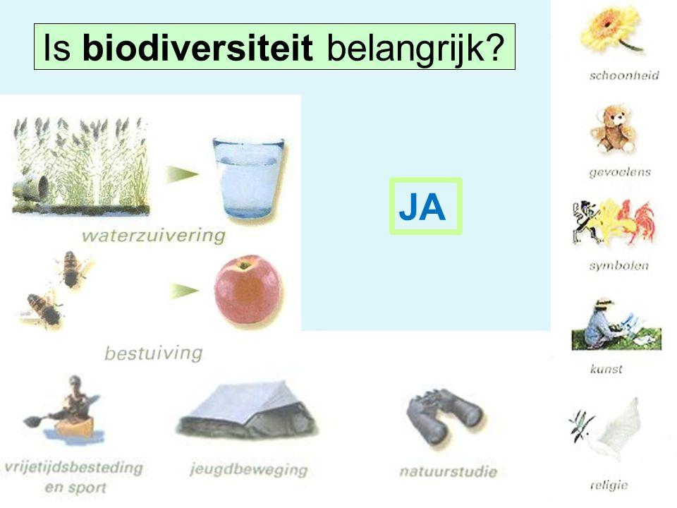 Is biodiversiteit belangrijk