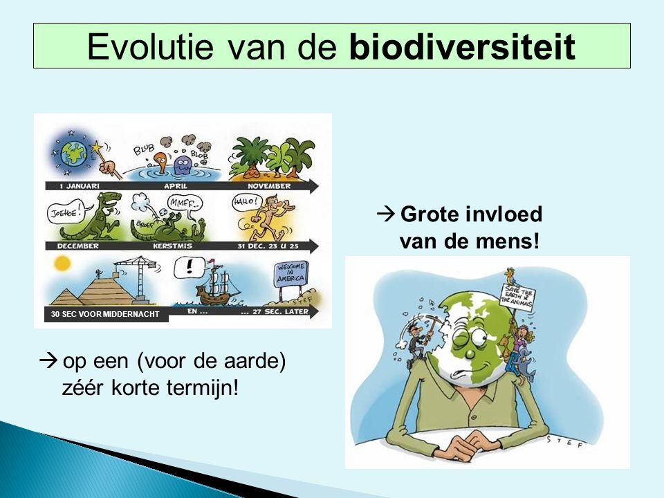 Evolutie van de biodiversiteit