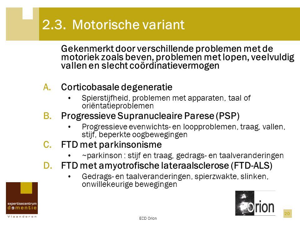2.3. Motorische variant