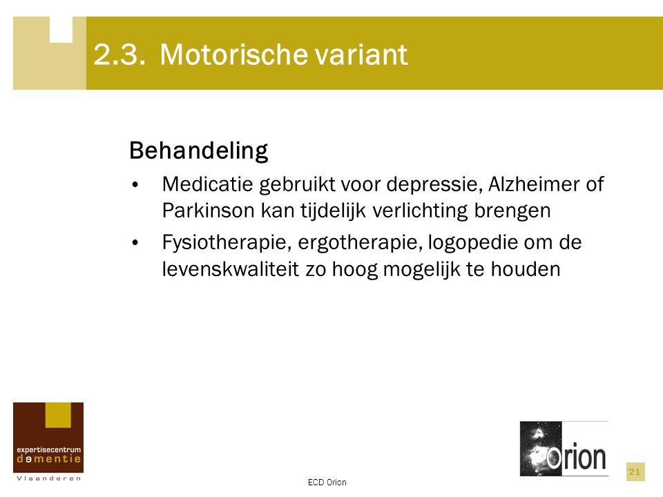 2.3. Motorische variant Behandeling
