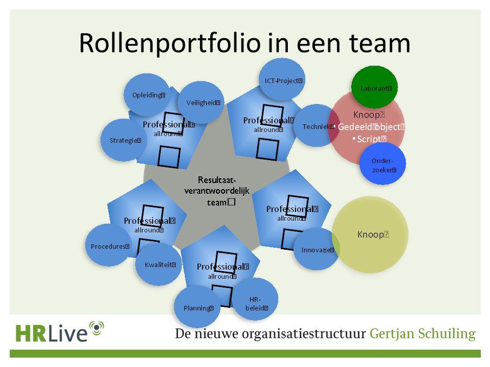 Rollenportfolio in een team