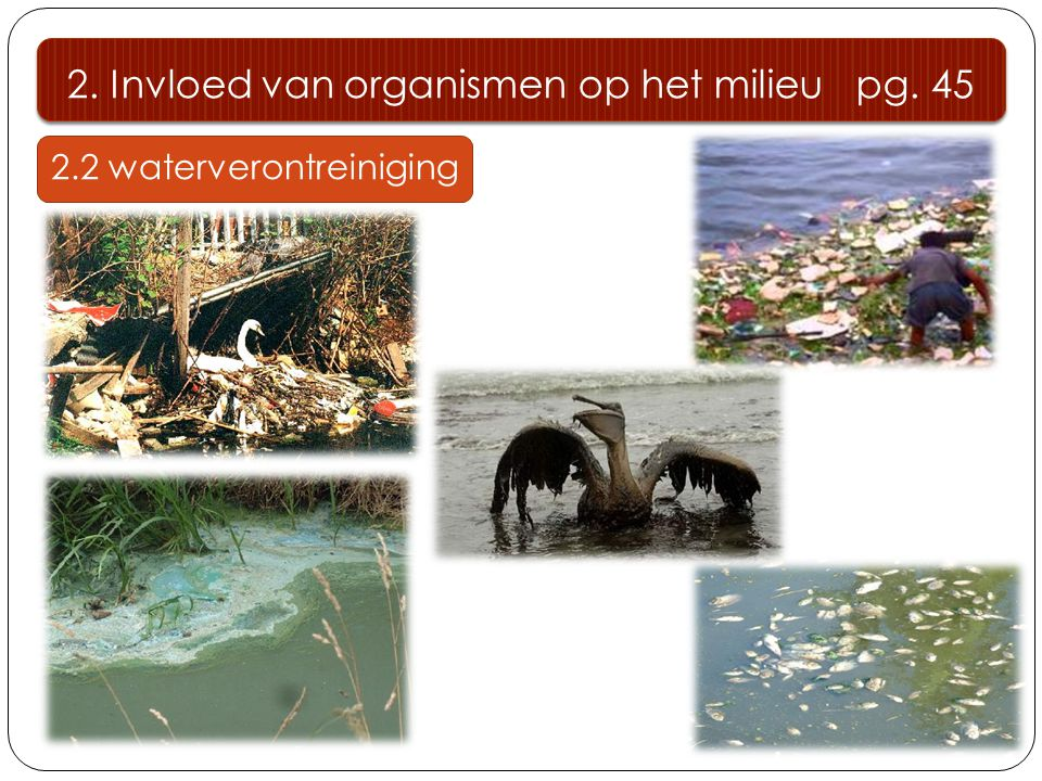 2. Invloed van organismen op het milieu pg. 45