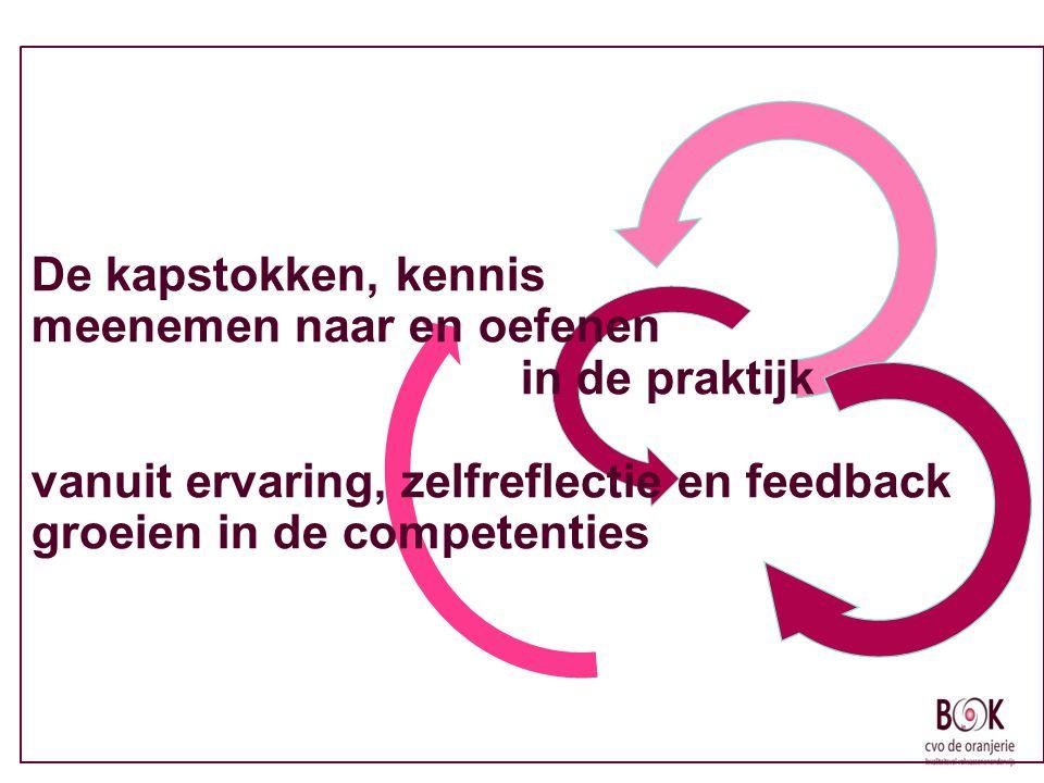 De kapstokken, kennis meenemen naar en oefenen in de praktijk vanuit ervaring, zelfreflectie en feedback groeien in de competenties