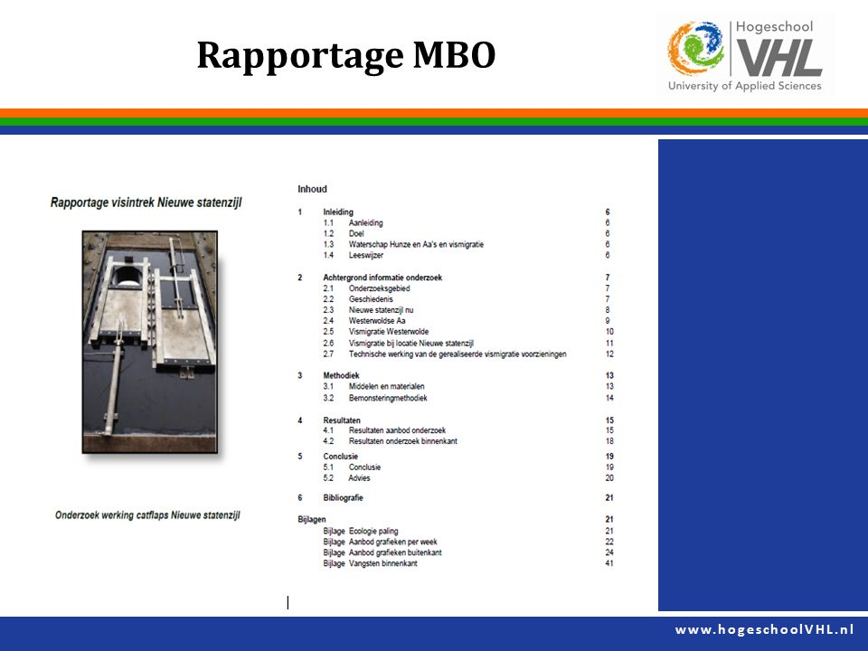 Rapportage MBO