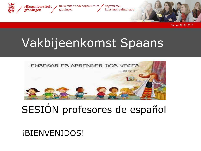 Vakbijeenkomst Spaans