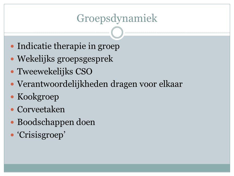 Groepsdynamiek Indicatie therapie in groep Wekelijks groepsgesprek
