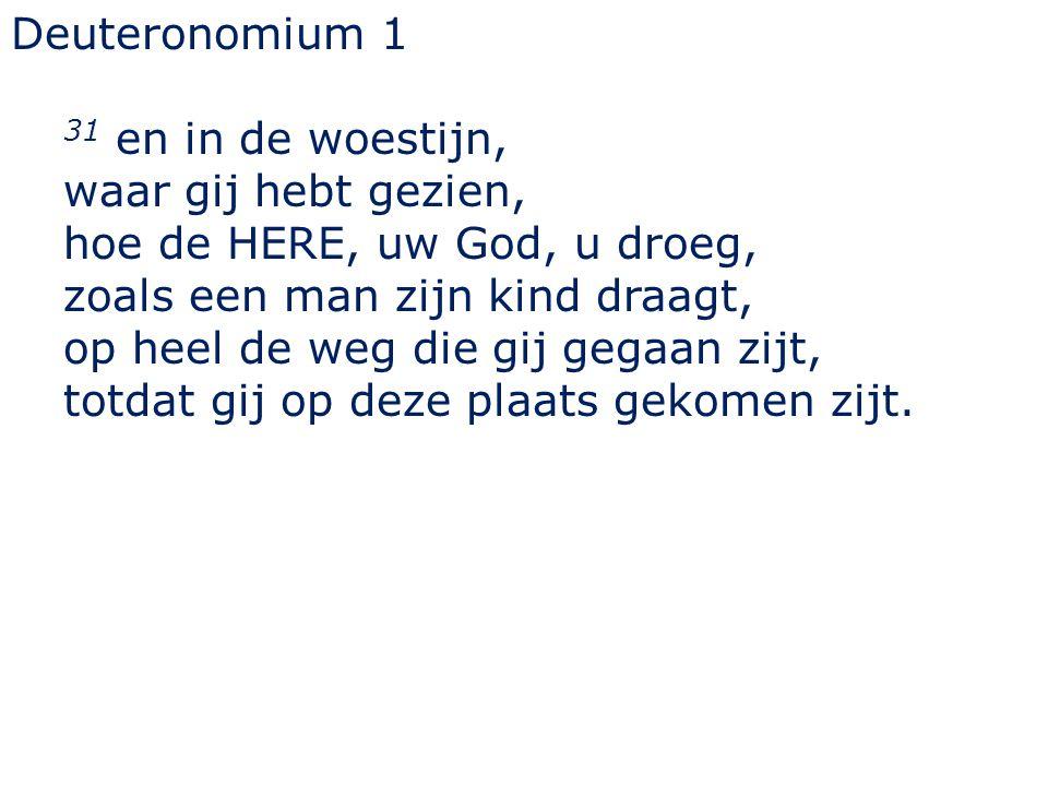 Deuteronomium 1 31 en in de woestijn, waar gij hebt gezien, hoe de HERE, uw God, u droeg, zoals een man zijn kind draagt,