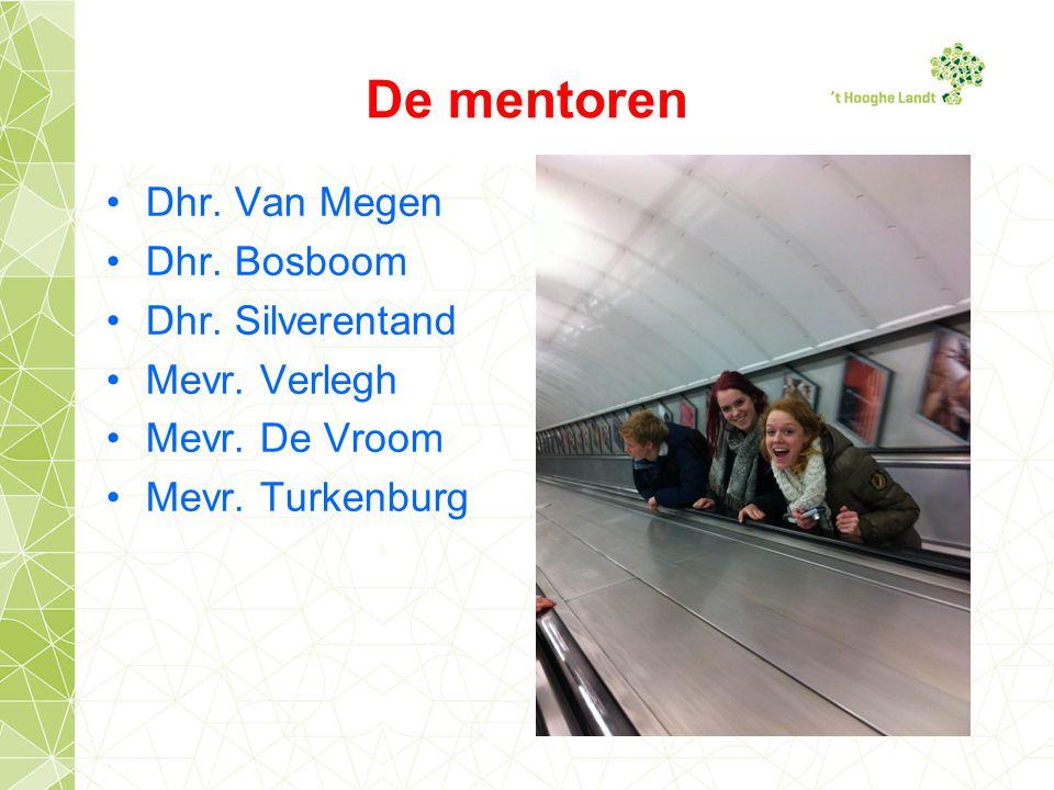 De mentoren Dhr. Van Megen Dhr. Bosboom Dhr. Silverentand