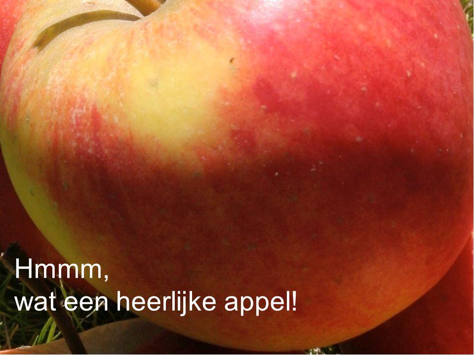 Hmmm, wat een heerlijke appel!