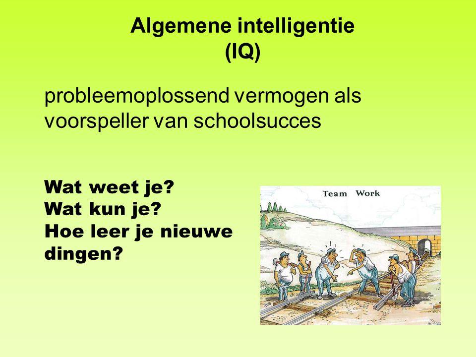 Algemene intelligentie (IQ)