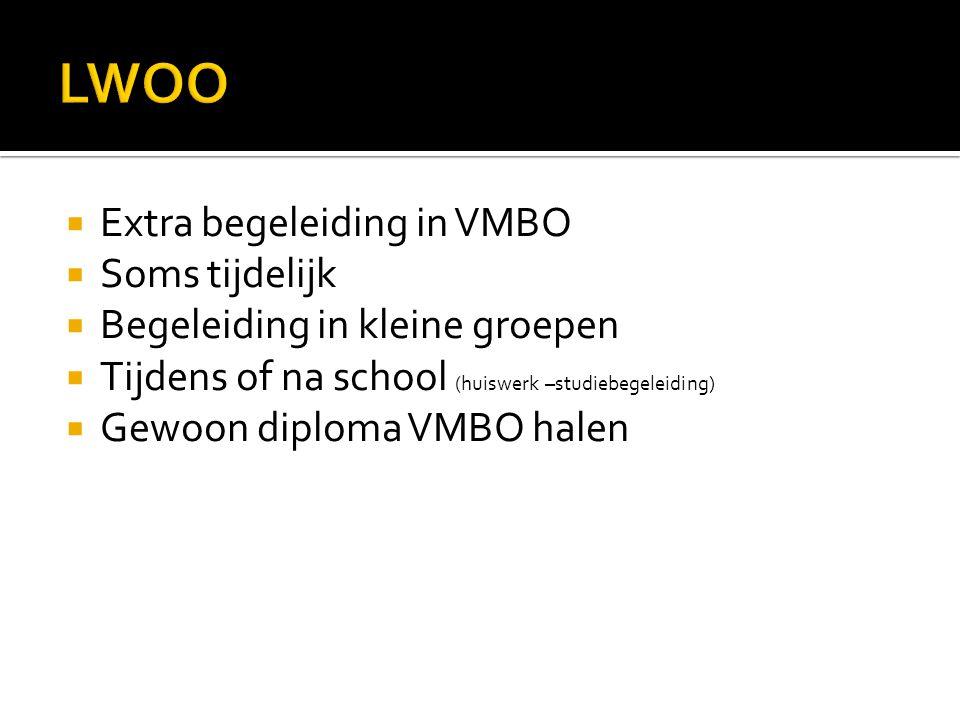 LWOO Extra begeleiding in VMBO Soms tijdelijk