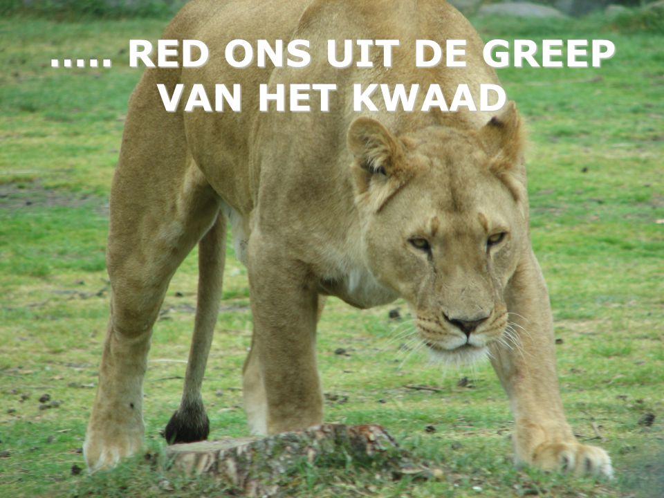 ….. RED ONS UIT DE GREEP VAN HET KWAAD