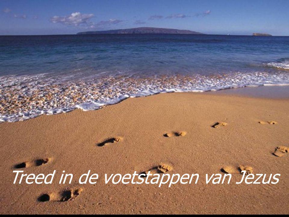 Treed in de voetstappen van Jezus