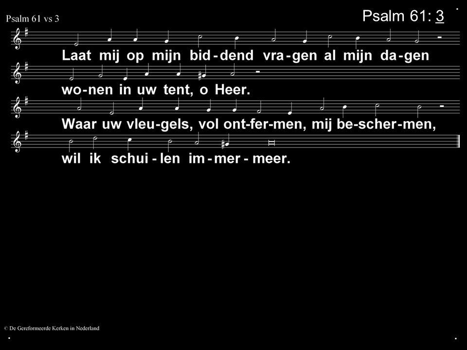 . Psalm 61: 3 . .