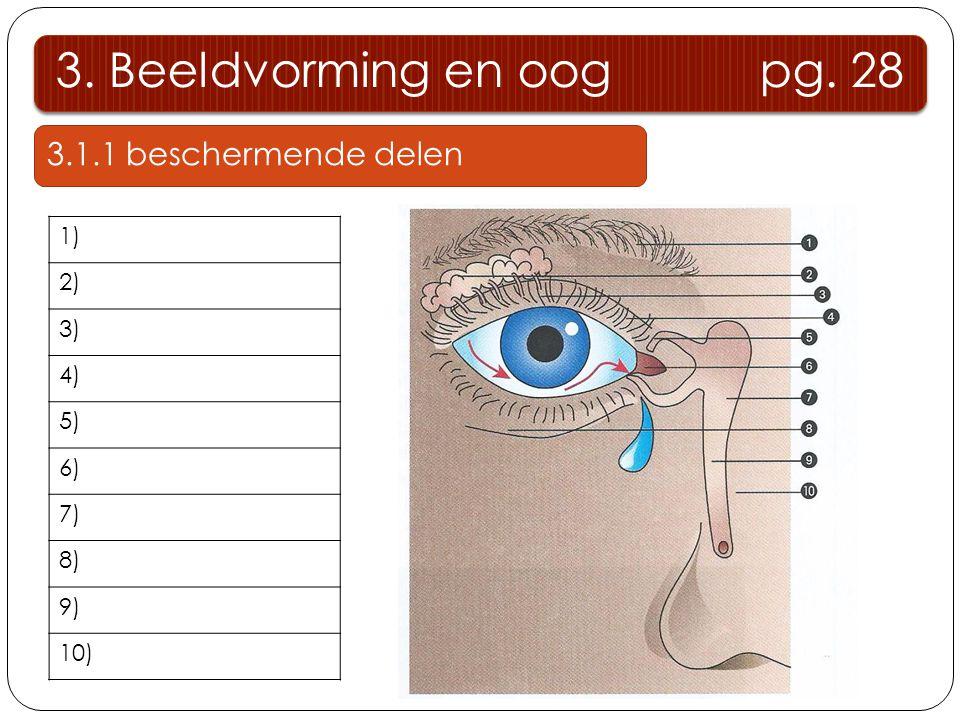 3. Beeldvorming en oog pg. 28 3.1.1 beschermende delen Wenkbrauw