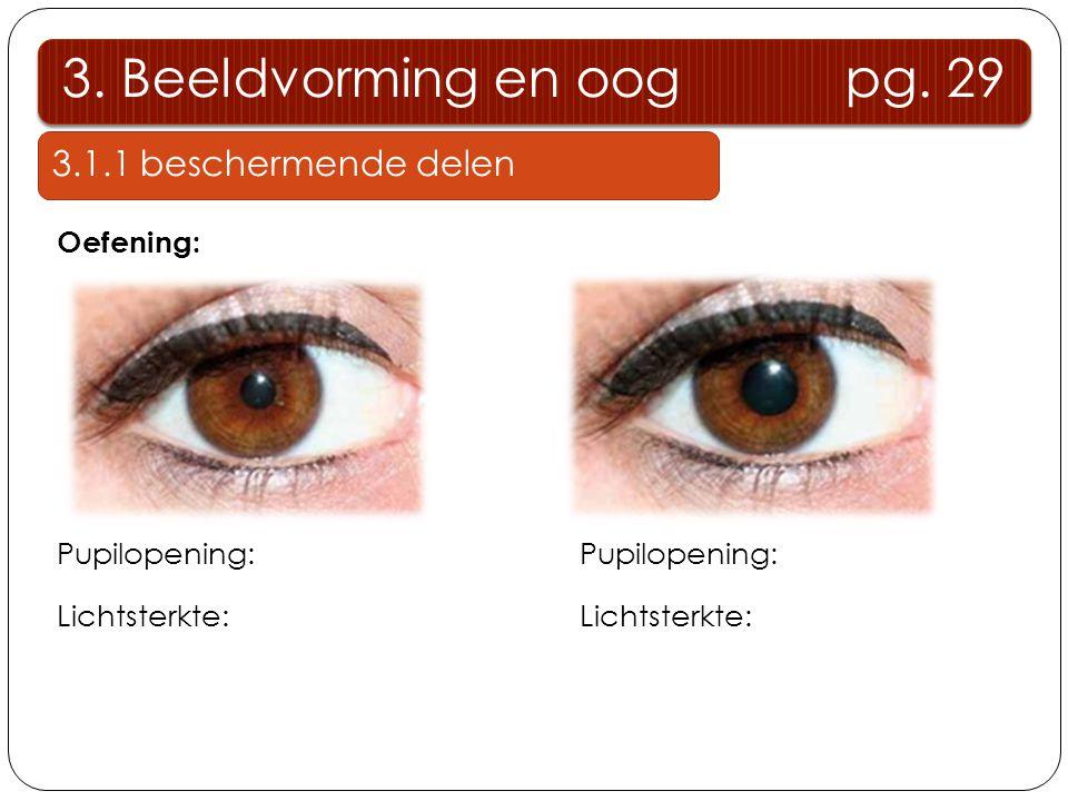 3. Beeldvorming en oog pg. 29 3.1.1 beschermende delen Oefening: