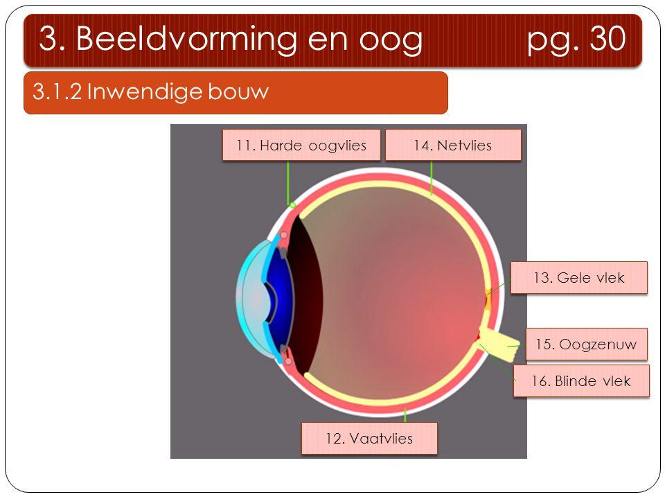 3. Beeldvorming en oog pg. 30 3.1.2 Inwendige bouw 11. Harde oogvlies