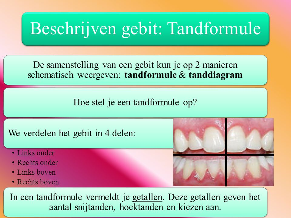 Beschrijven gebit: Tandformule