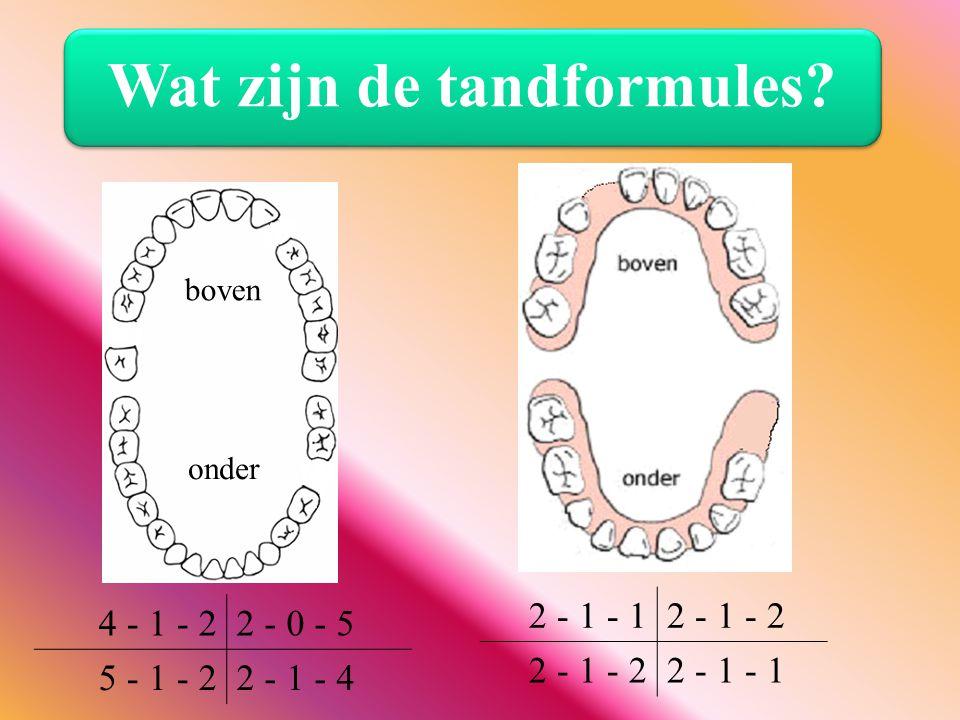 Wat zijn de tandformules