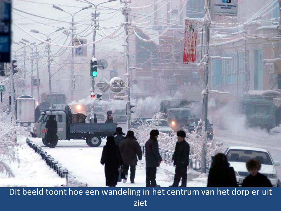 Dit beeld toont hoe een wandeling in het centrum van het dorp er uit ziet