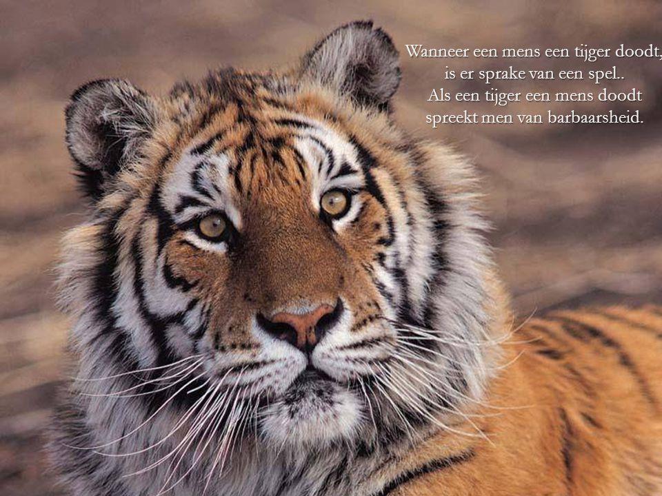 Wanneer een mens een tijger doodt, is er sprake van een spel
