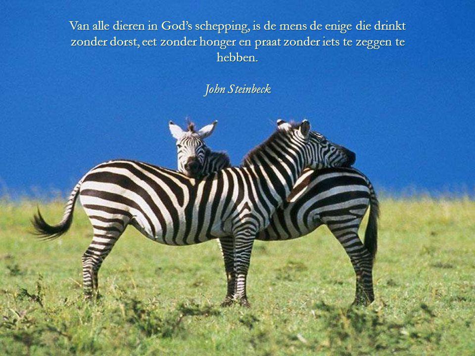 Van alle dieren in God's schepping, is de mens de enige die drinkt zonder dorst, eet zonder honger en praat zonder iets te zeggen te hebben.