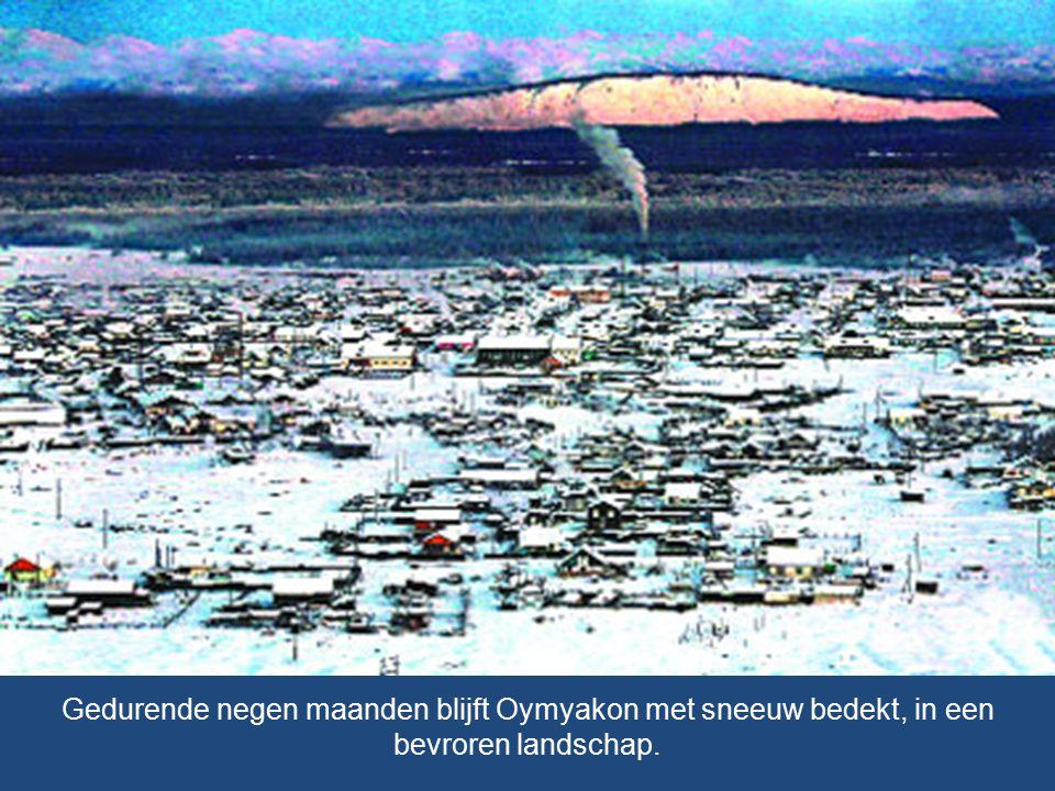 Gedurende negen maanden blijft Oymyakon met sneeuw bedekt, in een bevroren landschap.