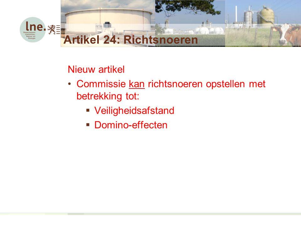 Artikel 24: Richtsnoeren