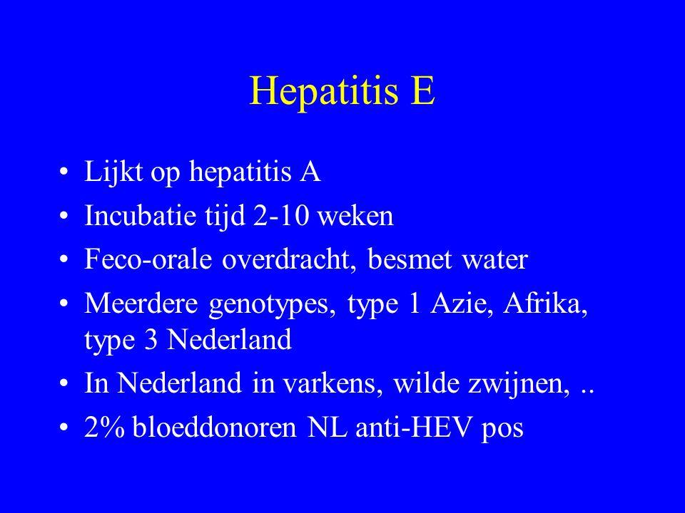Hepatitis E Lijkt op hepatitis A Incubatie tijd 2-10 weken