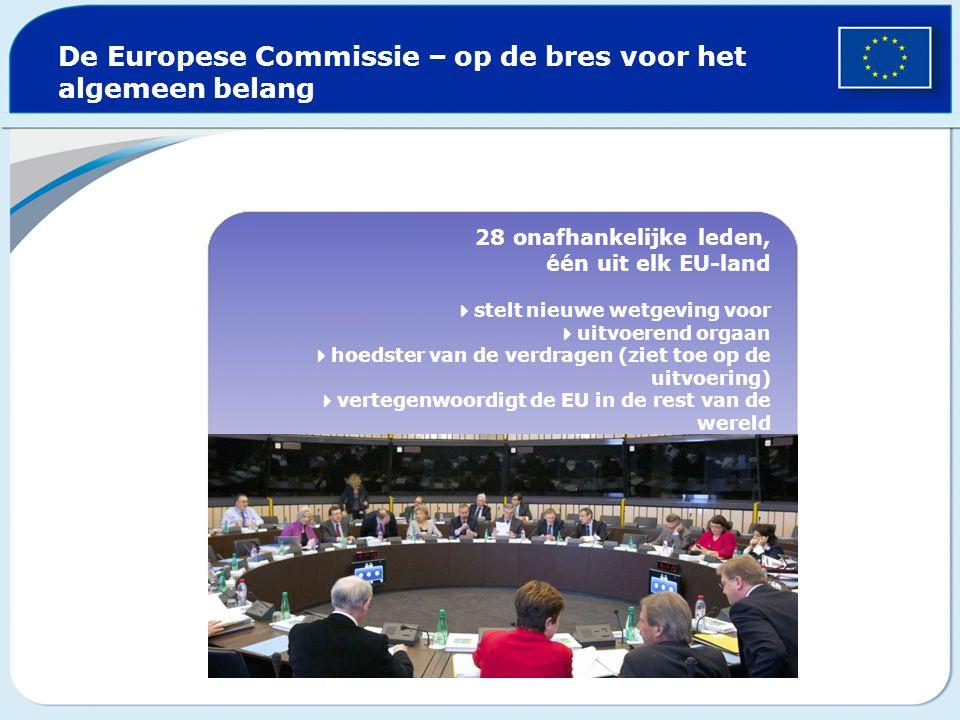 De Europese Commissie – op de bres voor het algemeen belang