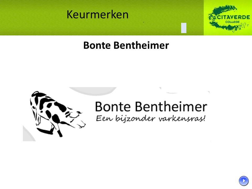 Keurmerken Bonte Bentheimer 33