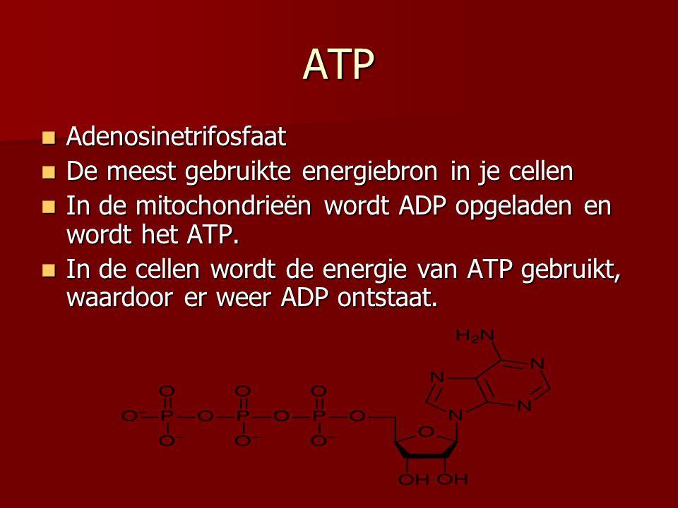 ATP Adenosinetrifosfaat De meest gebruikte energiebron in je cellen