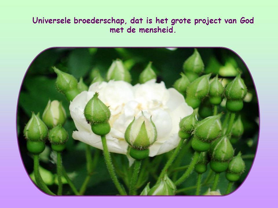 Universele broederschap, dat is het grote project van God met de mensheid.