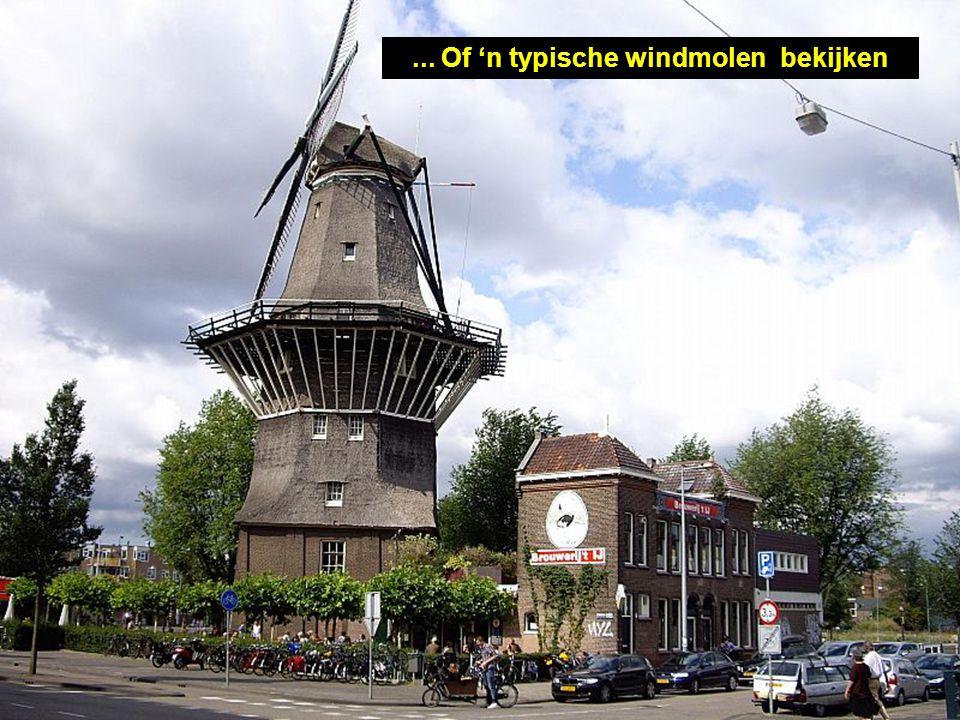 ... Of 'n typische windmolen bekijken