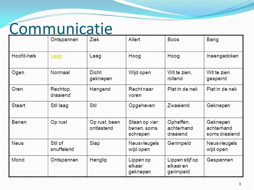 Communicatie Ontspannen Ziek Allert Boos Bang Hoofd-hals Laag Hoog