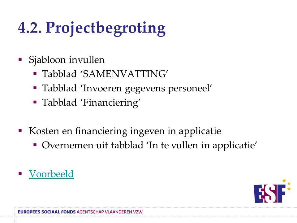4.2. Projectbegroting Sjabloon invullen Tabblad 'SAMENVATTING'