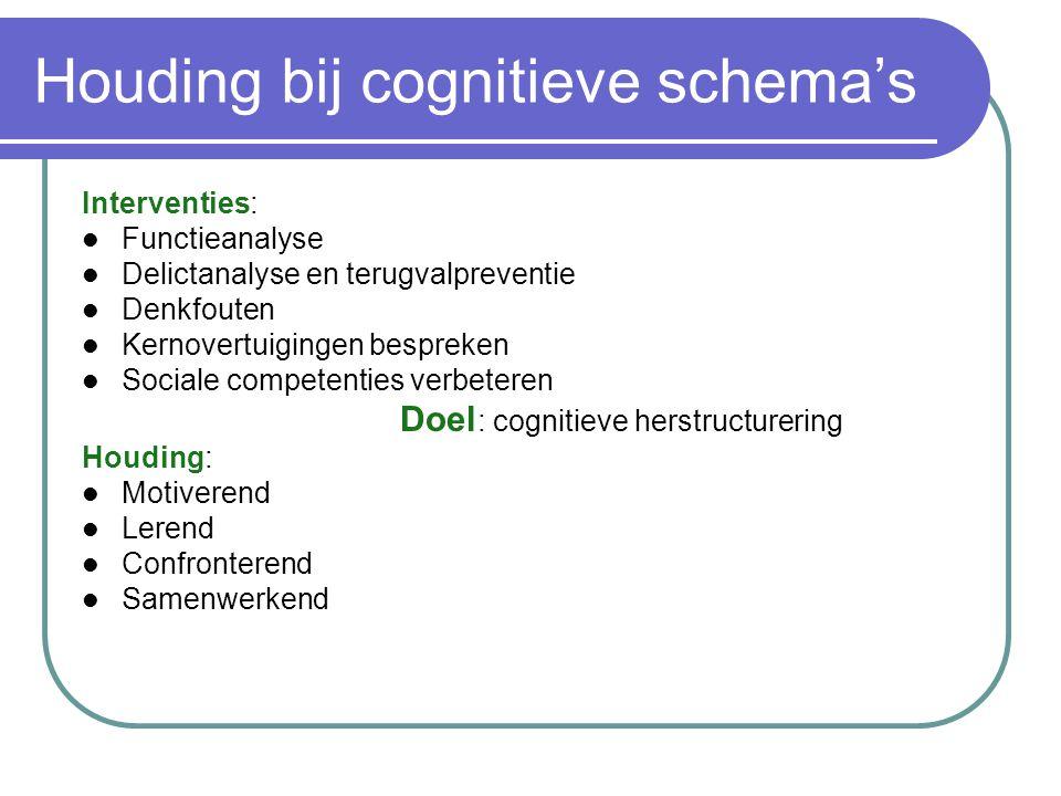 Houding bij cognitieve schema's